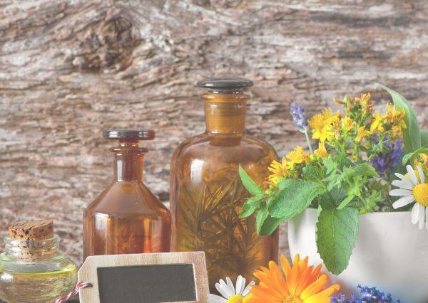 Le jardin de soin : culture et usages des plantes médicinales